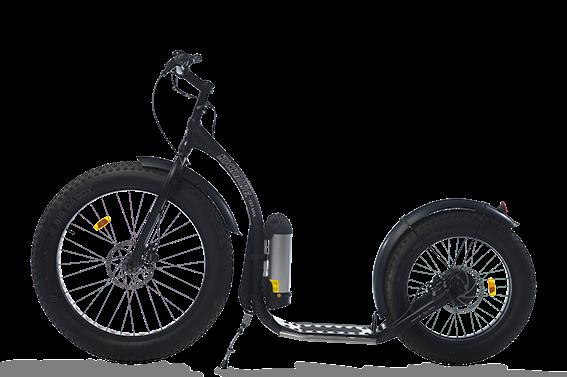 Elektrische kickbike
